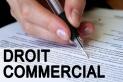 Droit commercial - Droit des sociétés